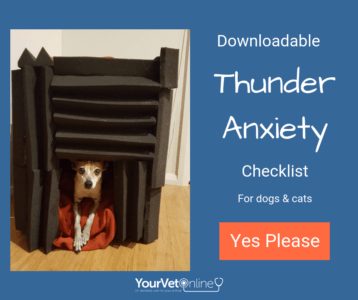 Download thunder storm anxiety checklist